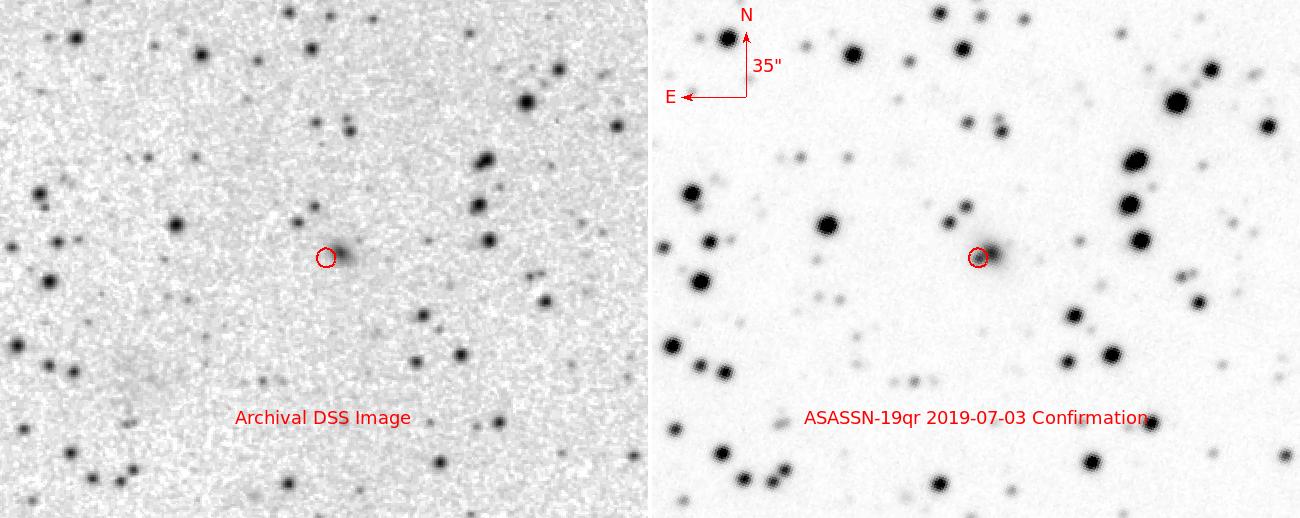 Latest Supernovae